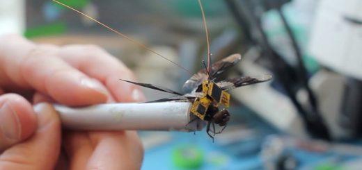 Первый полёт насекомые-киборга (видео)