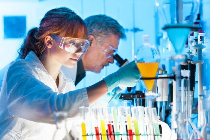 Создан биореактор для выращивания мозга
