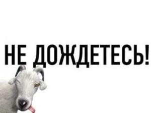 Livejournal стал доступен в Казахстане