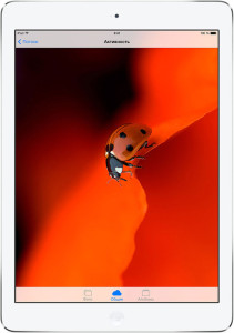 Обзор и технические характеристики Apple iPad 5 Air