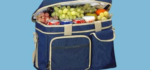 Купить сумку холодильник в Москве можно быстро и качественно