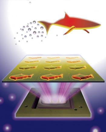 Искусственная рыба-микробот сможет очищать кровь человека от ядов 2