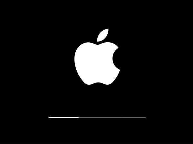 Новая система iOS способна поддерживать импорт файлов с SD-карт