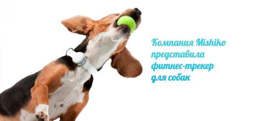 Mishiko фитнес-трекер для собак