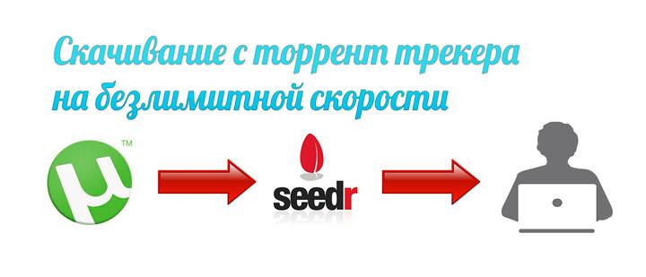 Онлайн-сервис SEEDR