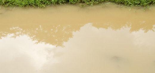Робот, получающий зарядку от «грязной» воды
