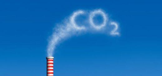 Фотосинтез, который спасет планету от парниковых газов
