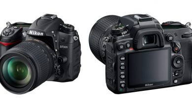 Зеркальный фотоаппарат Nikon D7000 Body. Обзор характеристик