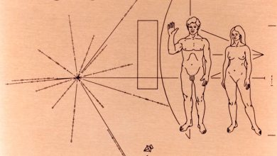 Дизайнер Дуэйн Кинг собирается вернуть на Землю послание к инопланетным мирам