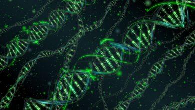 Microsoft собирается хранить данные в ДНК