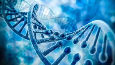 Американские ученые поняли, как зародилась жизнь на Земле
