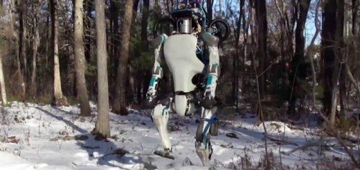 Роботы, совершающие ошибки, кажутся человеку более привлекательными