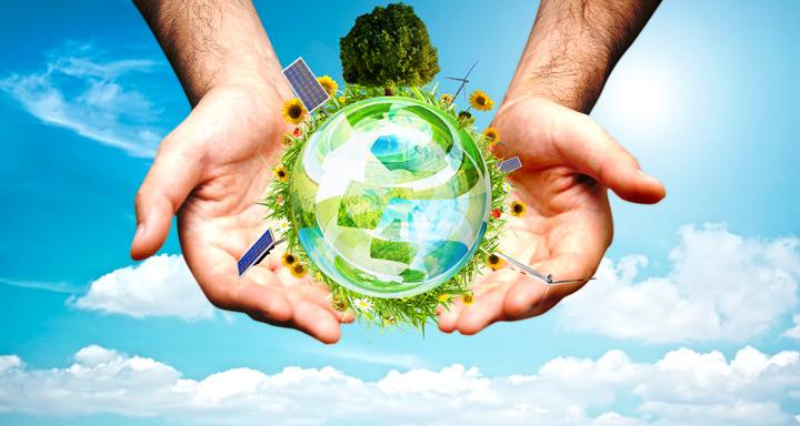Как привыкнуть к заботе об экологии