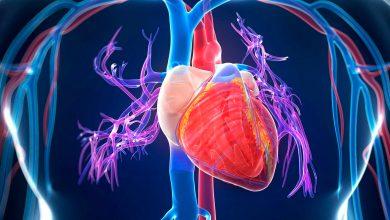 Робот, нормализующий сердцебиение. Американская разработка
