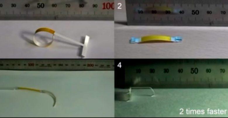 Гигроботы способны двигаться без электричества