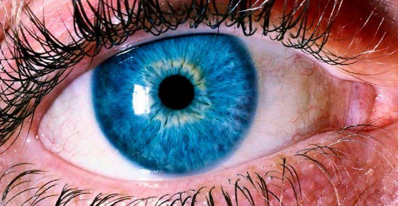 В Гарварде изобрели искусственный глаз!