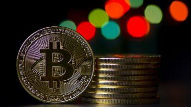 BuzCoin — новая криптовалюта от Ольги Бузовой
